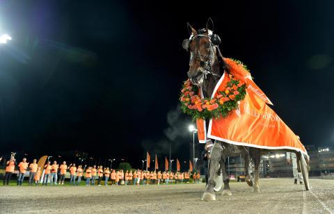 Norska stjärnan Support Justice är klar för Olympiatravets final!