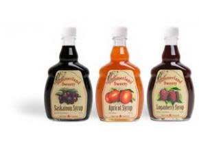 Global Syrups Market Professional Survey Report 2017
