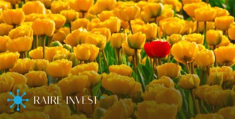 Huvudägare i RAIRE Invest avstår aktieutdelning.
