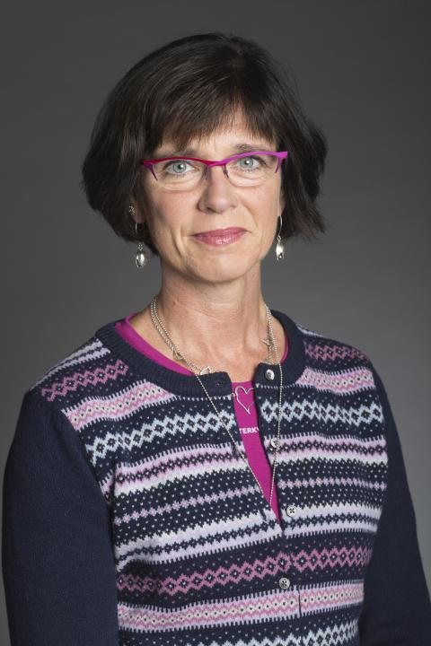 C: Teach for Sweden har potential att mildra lärarkrisen