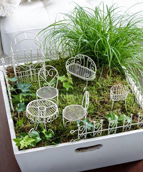 Minitr dg rd bakker skandinavien - Giardino in miniatura ...
