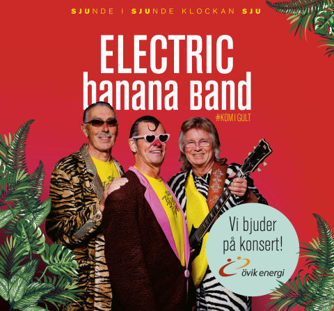 Electric Banana Band!