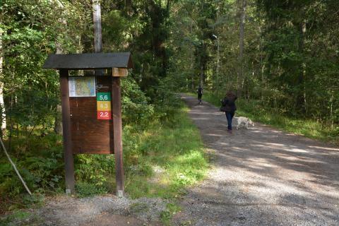 Motionsspår Rösjöskogen