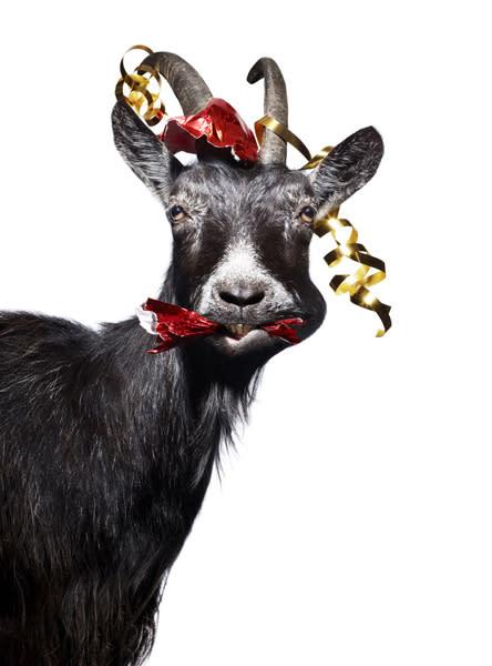 ActionAid firar jul med HägerFredlund