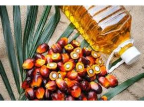 Global Palm Oil Derivatives Sales Market Report 2017
