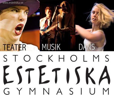 Stockholms Estetiska Gymnasium bland de allra bästa i Skolinspektionens skolenkät