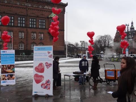DIS fik kærligheden til at svæve højt på Valentines dag!