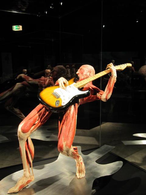 En utställning som lockar och rockar!
