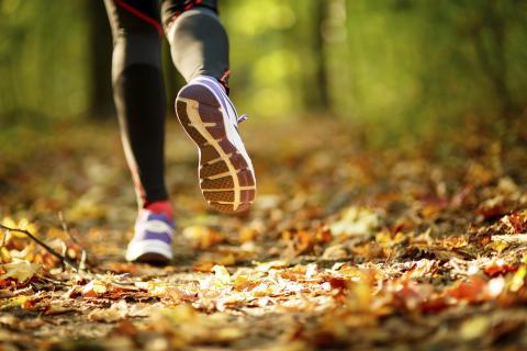 Utomhus löpning höst