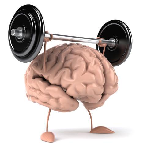 Tänd ett ljus i hjärnan, fysiken bakom insikt.
