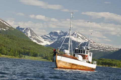 Fiskebåt 2