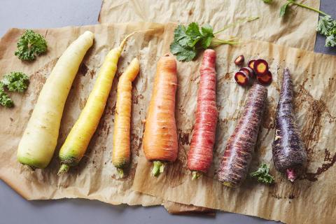 Apetit porkkanakimara Satakunnasta