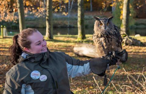 Höstmagi och ugglespaning i Skånes Djurpark