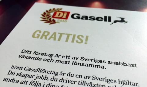 Specter blir Gasellföretag för fjärde året i rad