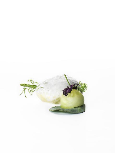 Ostron i variation med syrad gurka och alger