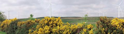 NTR Acquires Third Wind Farm From RES