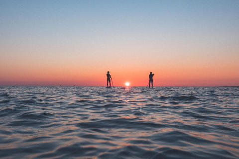 Stand Up Paddle / Visit Halland / Ron Johansson