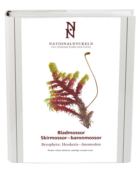 Nationalnyckeln bladmossor: skirmossor-baronmossor
