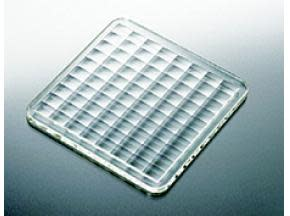 EMEA (Europe, Middle East and Africa) Lens Array Market Report 2017