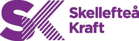 Security Solution Scandinavia AB genomför risk- och sårbarhetsanalyser (RSA) hos Skellefteå Kraft AB