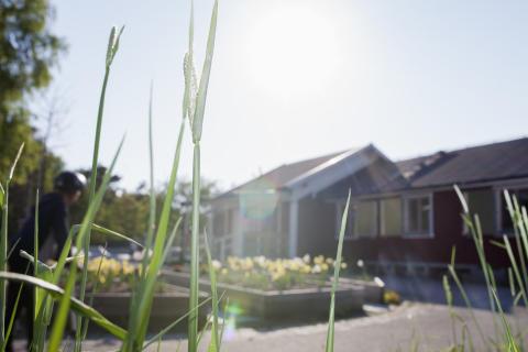 Generationsmöten skapar trygghet i Tynnered. Pressträff och invigning av mötesplats Bergkristallsparken i Tynnered 14 juni