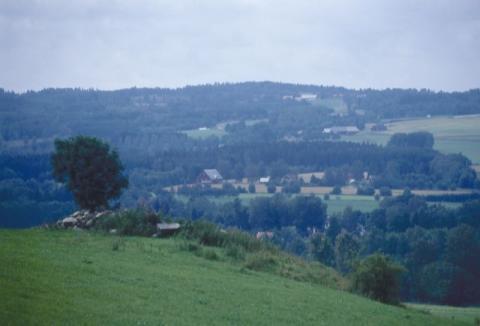 Duvpest på flera platser i landet