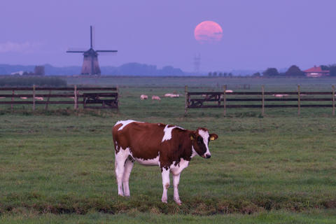 Dutch_Supermoon_2_Fullres_AlbertDros