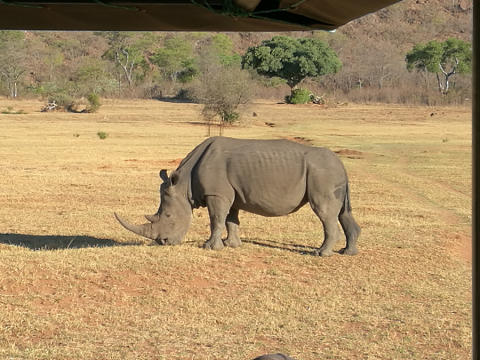 På APL i Sydafrika 1
