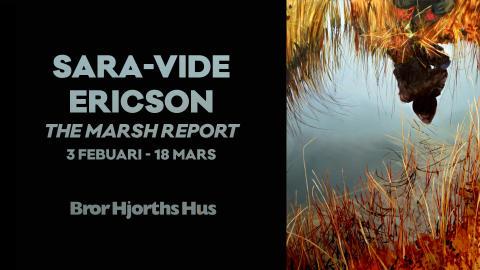 Mystik på myren - Sara-Vide Ericson visar nya målningar
