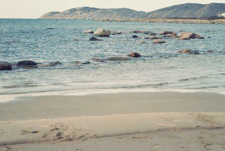 Havs- och vattenfrågor viktiga på miljömöte i Genève