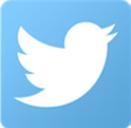 Twitter - icon