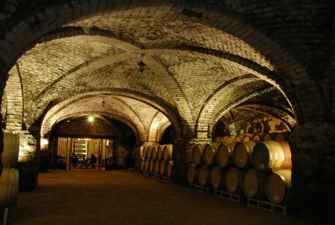 VsP Cellar