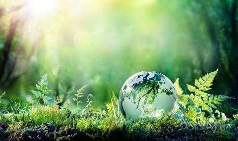 Gentle reminder: Creating a more sustainable future through corporate responsibility initiatives