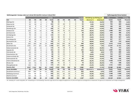 Vismas månadsrapport för nyföretagandet (juni 2013)