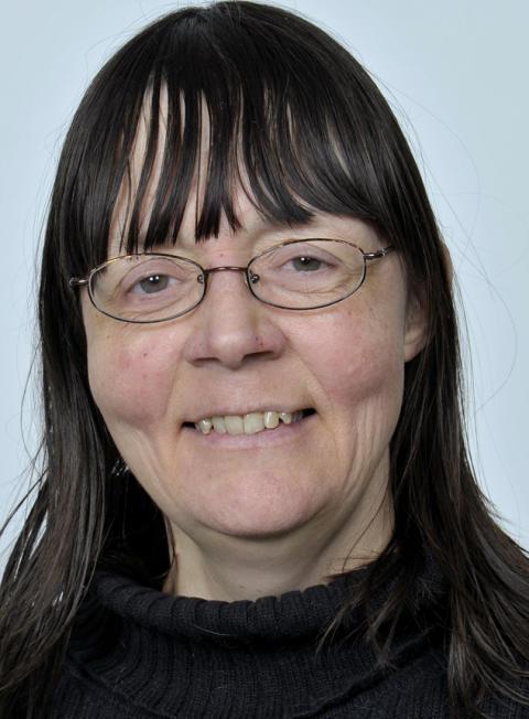 Liselotte Frisk, professor i religionsvetenskap