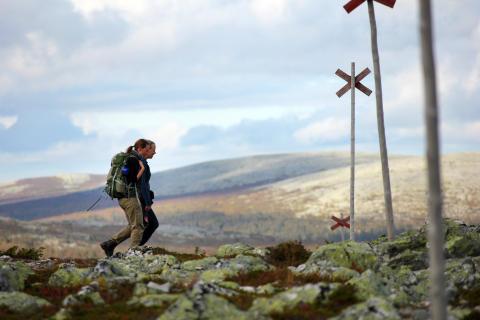 Swedish pilgrim path St  Olavsleden on The Guardian's top