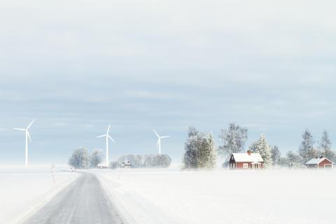 Grüner Fußabdruck - so machen es die Schweden