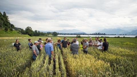 Offener Tag in Feldbach – Coverfoto für die Studie ‹Saatgut – Gemeingut›
