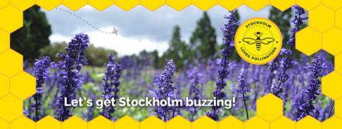 Nationalstadsparken blir pollinerarvänlig park