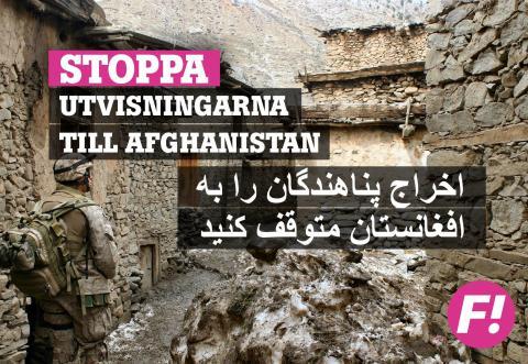 Stoppa utvisningarna till Afghanistan