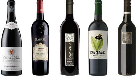 5 viner til grillmaten i sommer