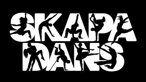 webtop_skapa_dans_logotyp_ny
