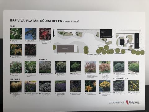 Brf Viva Göteborg, invigning, tavla med arter