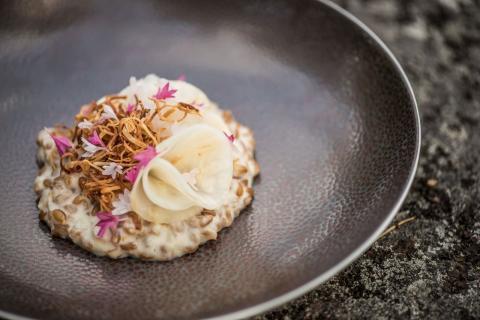 Kokkimaajoukkueen lautasella: Selleri-ruispuuro viinitarhurin juustolla