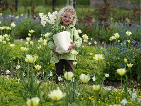 Skolbarn planterar blomsterlökar