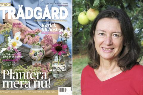 Ann Fredlund ny chefredaktör för Allt om Trädgård