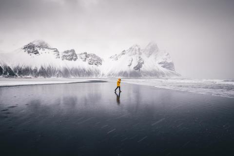 Професионални фотографи дават висока оценка на влиянието, което Sony World Photography Awards оказва върху техните кариери, наред с нови снимки, които Конкурсът разкрива, един месец преди крайния срок за участие