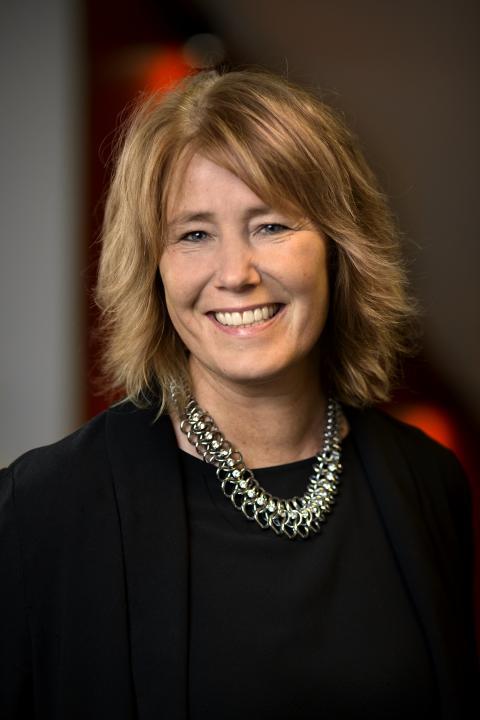 Johanna Frelin, vd Riksbyggen