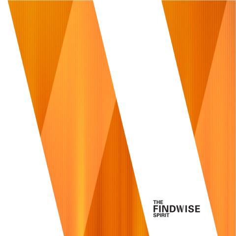The Findwise Spirit