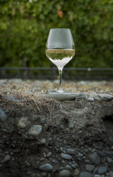 Stoneleigh lanserar senaste årgångarna av single vineyard vinerna från Rapaura – elegant kvalitet från Nya Zeeland